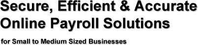 Secure, Efficient, and Accurate Online Payroll Solutions for Small to Medium Businesses